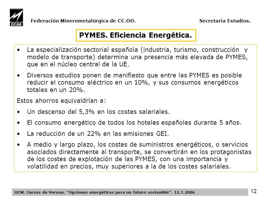 12 Federación Minerometalúrgica de CC.OO. Secretaria Estudios.