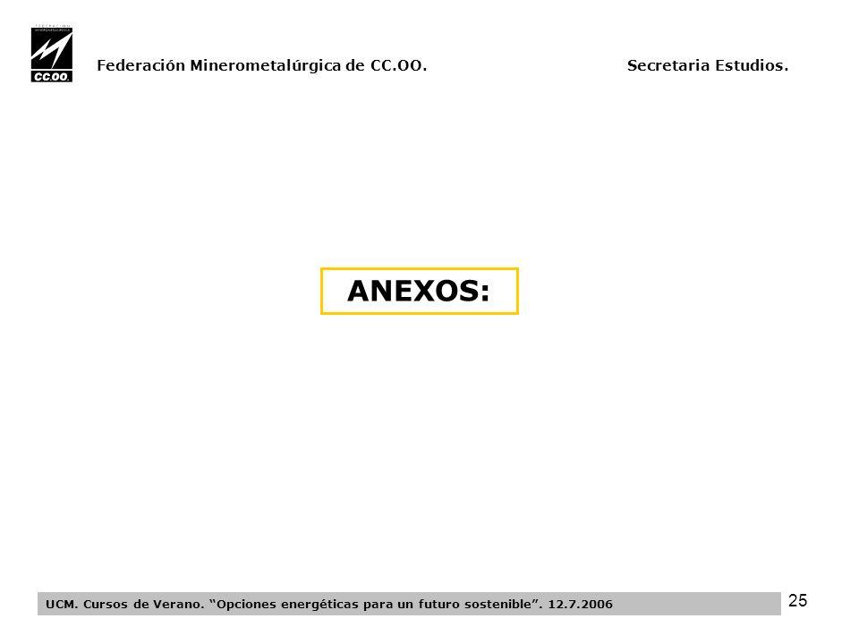 25 Federación Minerometalúrgica de CC.OO. Secretaria Estudios.