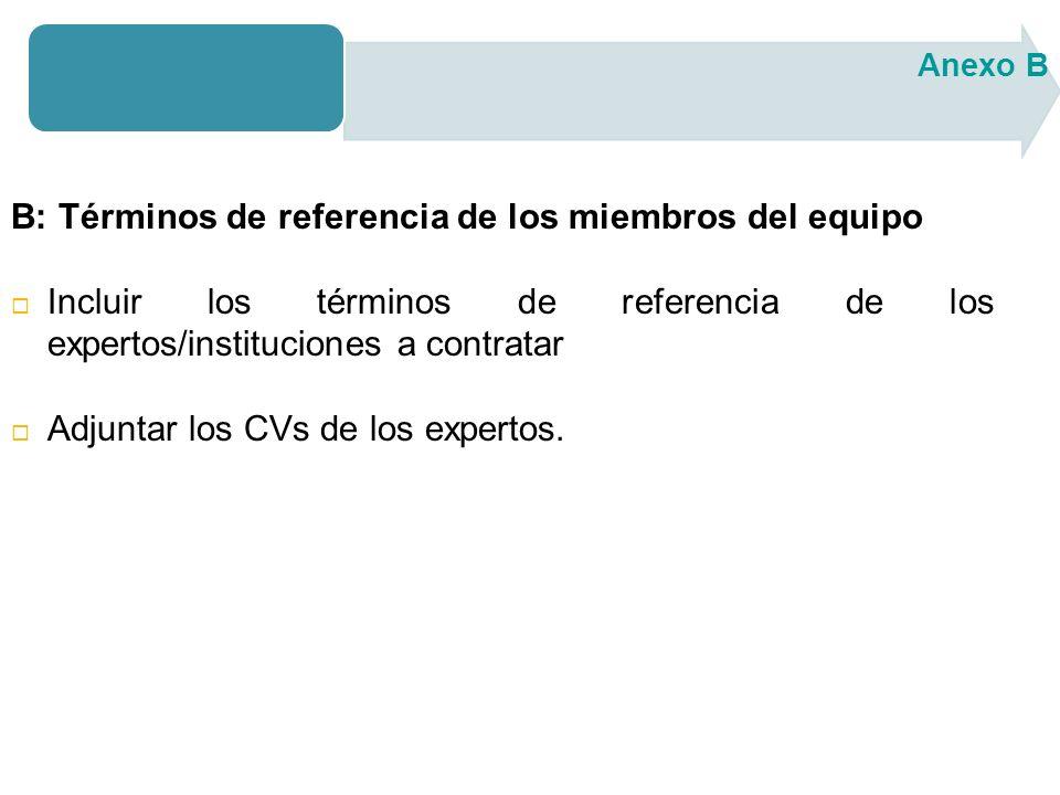 B: Términos de referencia de los miembros del equipo Incluir los términos de referencia de los expertos/instituciones a contratar Adjuntar los CVs de los expertos.
