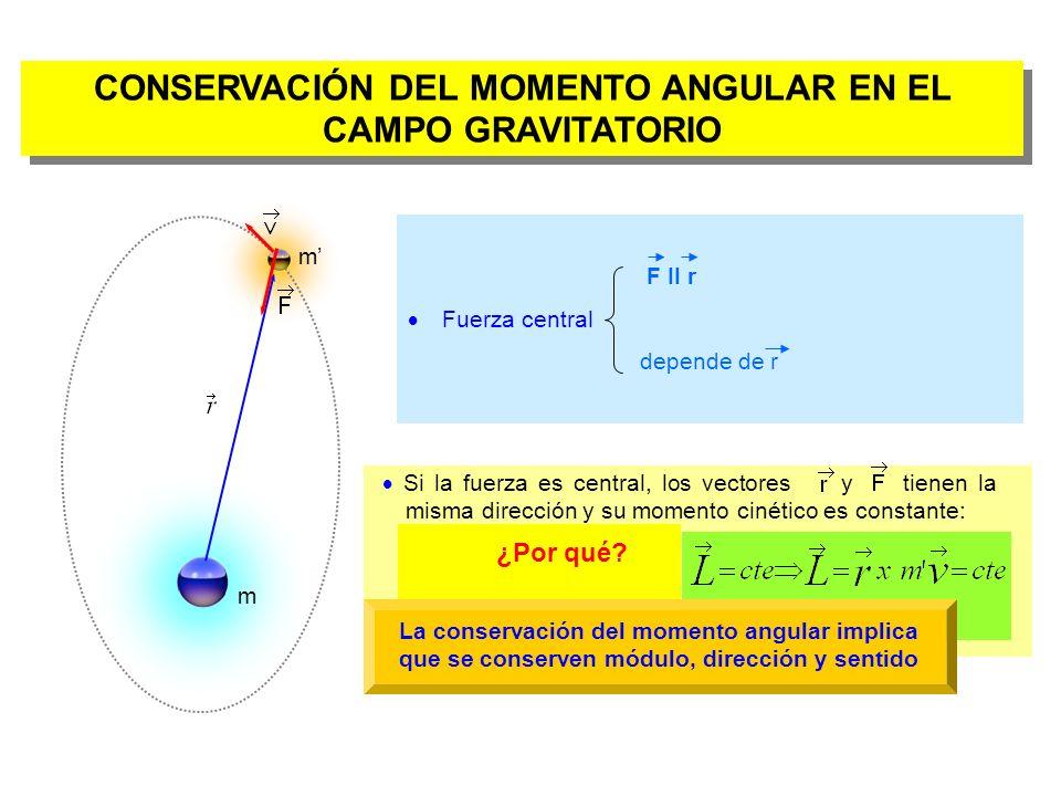 El momento angular será perpendicular al plano que forman los vectores y, por tanto la trayectoria de la partícula debe estar en un plano Si conserva el sentido, la partícula siempre recorrerá la órbita en el mismo sentido de giro.