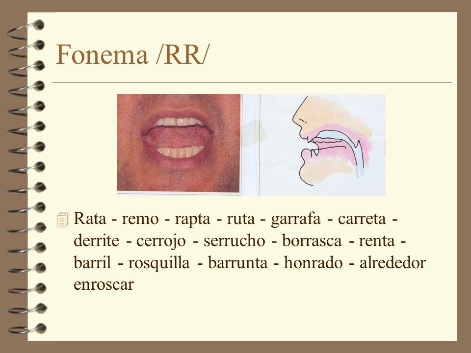 Fonema /RR/ 4 Rata - remo - rapta - ruta - garrafa - carreta - derrite - cerrojo - serrucho - borrasca - renta - barril - rosquilla - barrunta - honra
