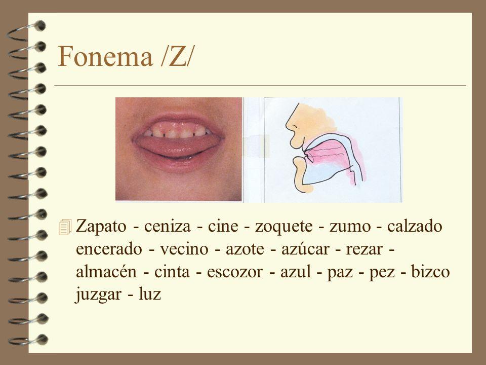 Fonema /Z/ 4 Zapato - ceniza - cine - zoquete - zumo - calzado encerado - vecino - azote - azúcar - rezar - almacén - cinta - escozor - azul - paz - p