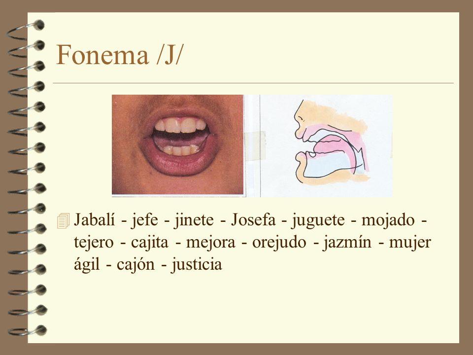 Fonema /J/ 4 Jabalí - jefe - jinete - Josefa - juguete - mojado - tejero - cajita - mejora - orejudo - jazmín - mujer ágil - cajón - justicia
