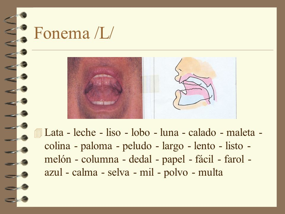 Fonema /L/ 4 Lata - leche - liso - lobo - luna - calado - maleta - colina - paloma - peludo - largo - lento - listo - melón - columna - dedal - papel