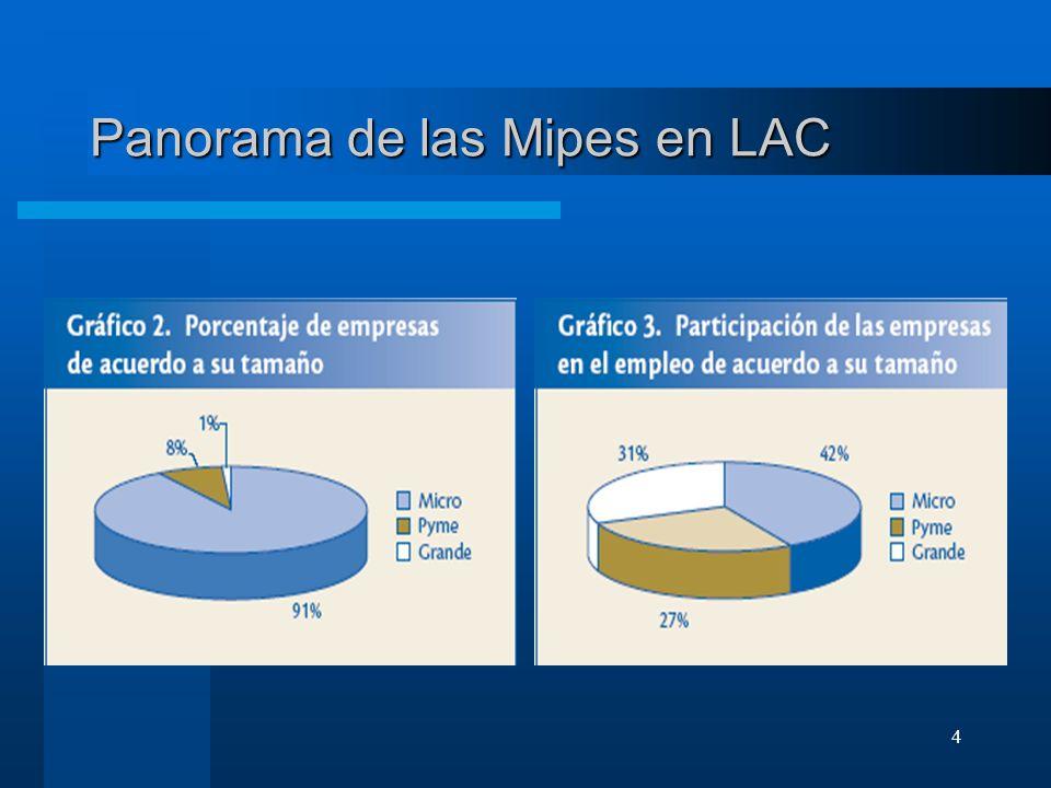 5 Problemas de las Mipymes en LAC Pymes: –Poco acceso a financiamiento –Baja capacidad gerencial –Difícil acceso a mercados –Poca cooperación empresarial –Muchos obstáculos en el entorno de negocios Microempresas –Avances en las microfinanzas.