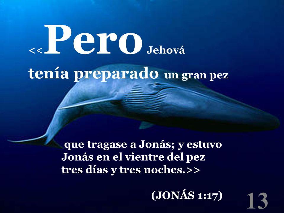 13 << Pero Jehová tenía preparado un gran pez que tragase a Jonás; y estuvo Jonás en el vientre del pez tres días y tres noches.>> (JONÁS 1:17)