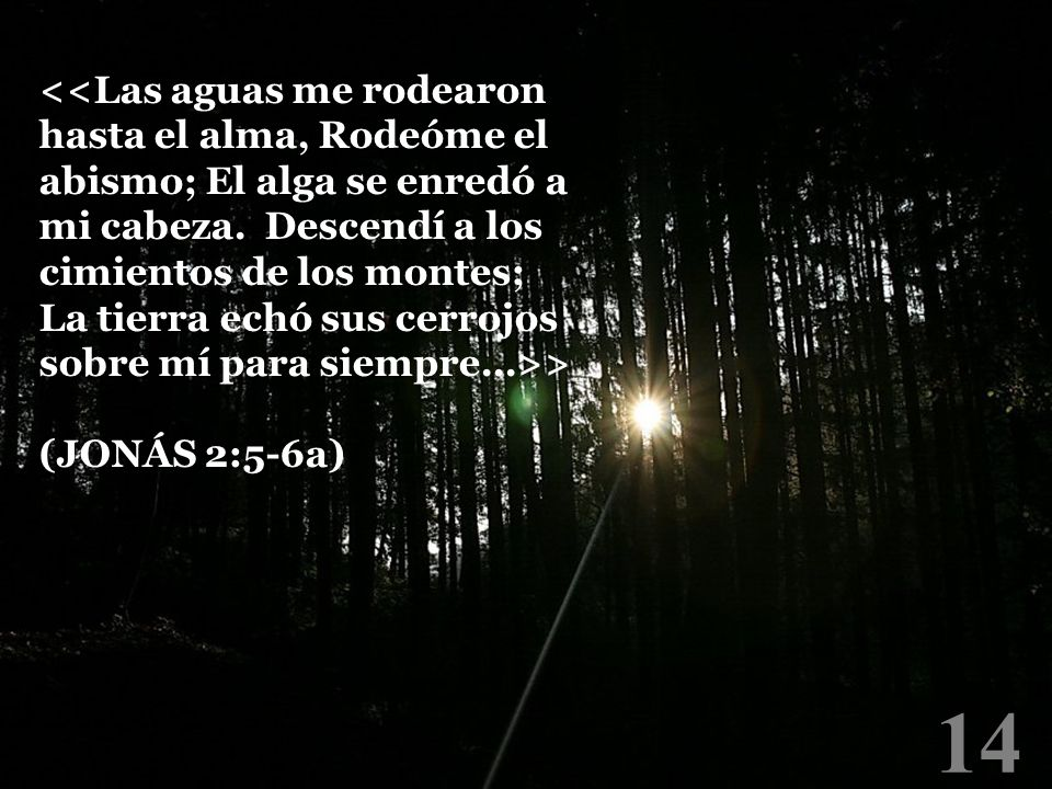 14 > (JONÁS 2:5-6a)