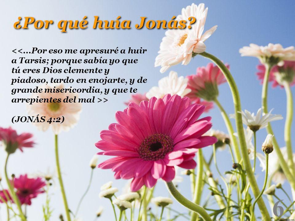 6 > (JONÁS 4:2) ¿Por qué huía Jonás?