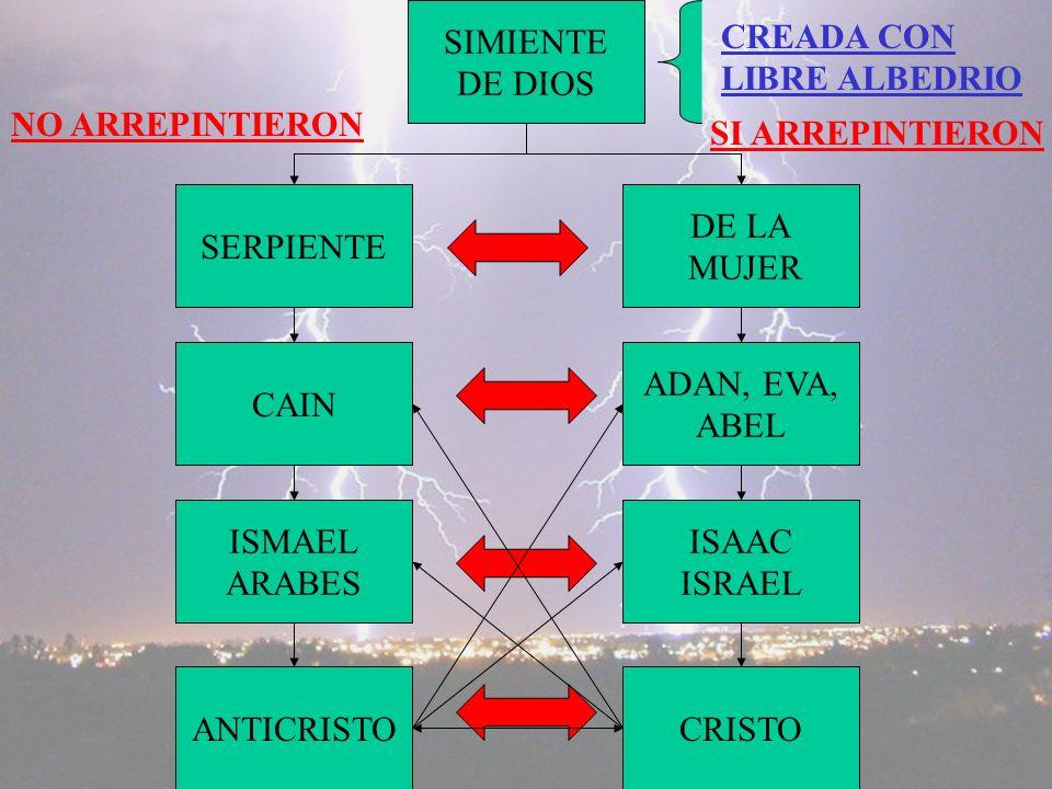 SERPIENTE SIMIENTE DE DIOS ISMAEL ARABES DE LA MUJER ISAAC ISRAEL CREADA CON LIBRE ALBEDRIO NO ARREPINTIERON SI ARREPINTIERON CAIN ADAN, EVA, ABEL ANTICRISTOCRISTO