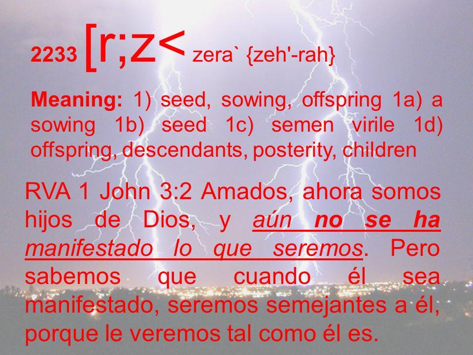 2233 [r;z< zera` {zeh -rah} Meaning: 1) seed, sowing, offspring 1a) a sowing 1b) seed 1c) semen virile 1d) offspring, descendants, posterity, children RVA 1 John 3:2 Amados, ahora somos hijos de Dios, y aún no se ha manifestado lo que seremos.