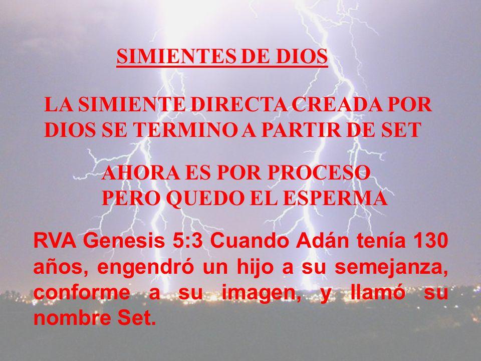 SIMIENTES DE DIOS LA SIMIENTE DIRECTA CREADA POR DIOS SE TERMINO A PARTIR DE SET RVA Genesis 5:3 Cuando Adán tenía 130 años, engendró un hijo a su semejanza, conforme a su imagen, y llamó su nombre Set.
