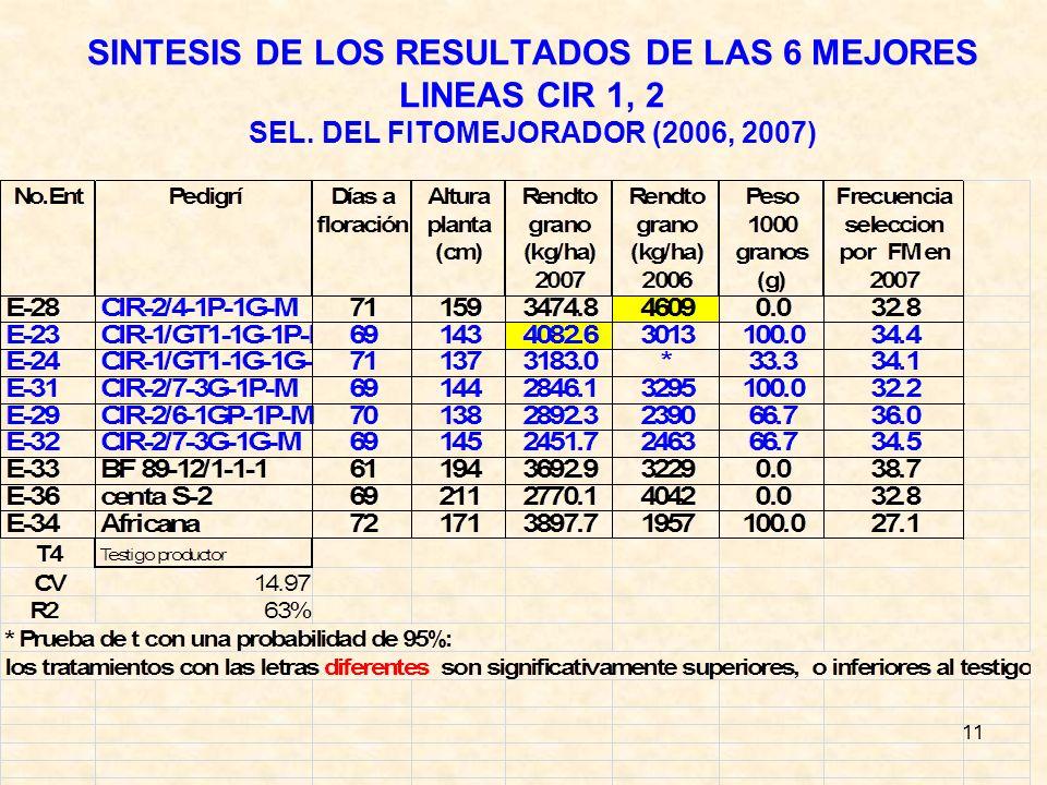 11 SINTESIS DE LOS RESULTADOS DE LAS 6 MEJORES LINEAS CIR 1, 2 SEL. DEL FITOMEJORADOR (2006, 2007)