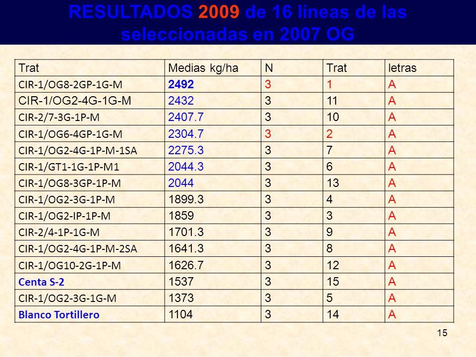15 RESULTADOS RESULTADOS 2009 de 16 líneas de las seleccionadas en 2007 OG TratMedias kg/haNTratletras CIR-1/OG8-2GP-1G-M 249231A CIR-1/OG2-4G-1G-M243