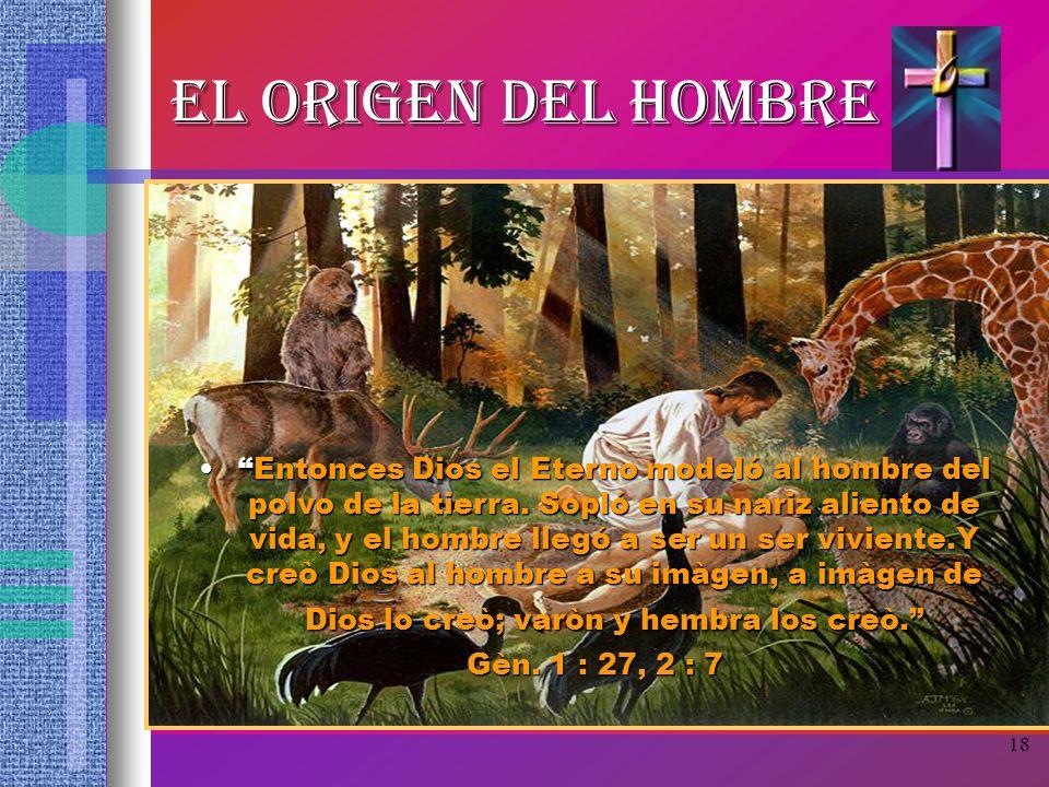 18 EL ORIGEN DEL HOMBRE Entonces Dios el Eterno modeló al hombre del polvo de la tierra. Sopló en su nariz aliento de vida, y el hombre llegó a ser un