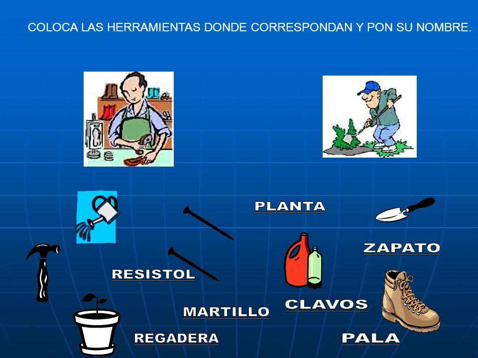 COLOCA LAS HERRAMIENTAS DONDE CORRESPONDAN Y PON SU NOMBRE.