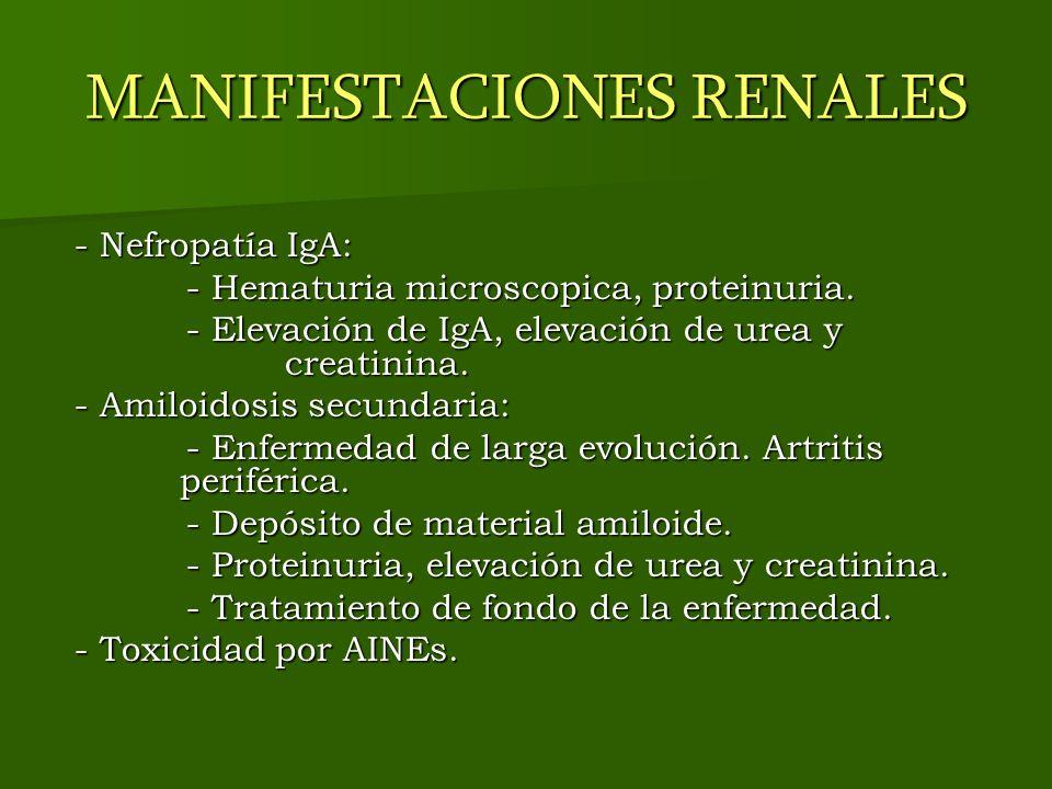 MANIFESTACIONES RENALES - Nefropatía IgA: - Nefropatía IgA: - Hematuria microscopica, proteinuria. - Hematuria microscopica, proteinuria. - Elevación