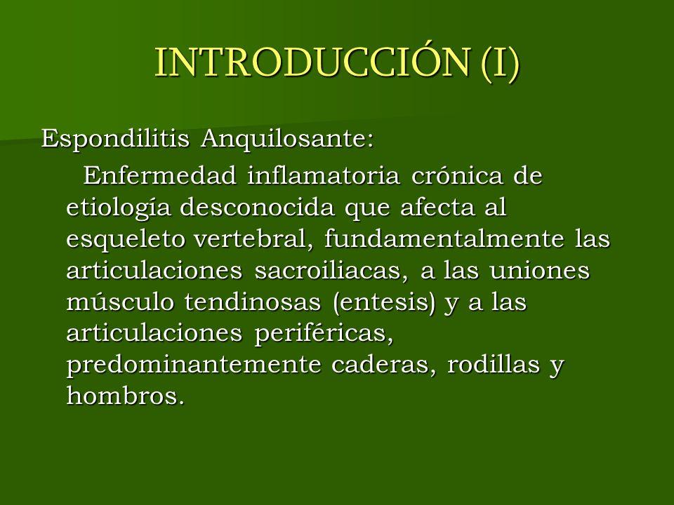 INTRODUCCIÓN (I) Espondilitis Anquilosante: Enfermedad inflamatoria crónica de etiología desconocida que afecta al esqueleto vertebral, fundamentalmen