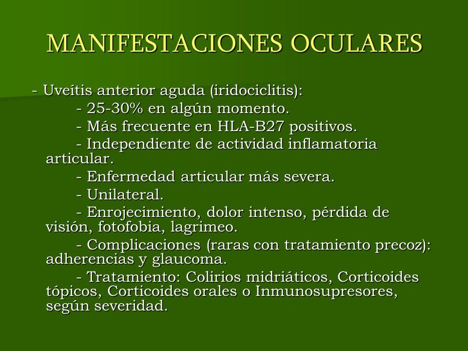 MANIFESTACIONES OCULARES - Uveítis anterior aguda (iridociclitis): - Uveítis anterior aguda (iridociclitis): - 25-30% en algún momento. - 25-30% en al