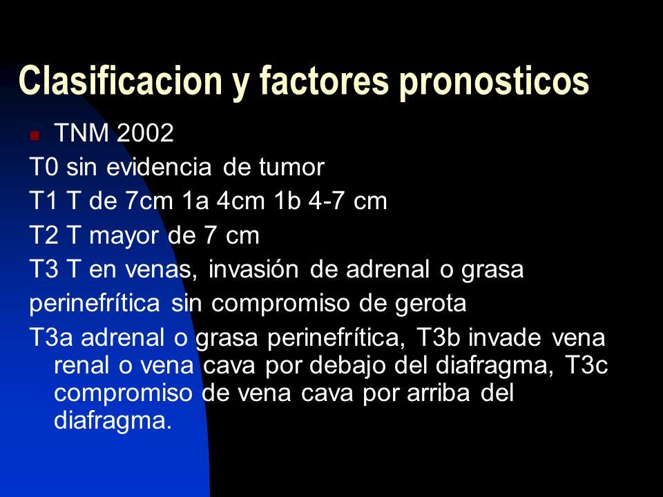 Clasificacion y factores pronosticos TNM 2002 T0 sin evidencia de tumor T1 T de 7cm 1a 4cm 1b 4-7 cm T2 T mayor de 7 cm T3 T en venas, invasión de adr