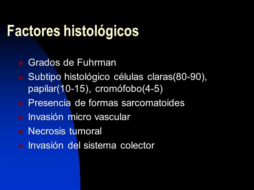 Factores histológicos Grados de Fuhrman Subtipo histológico células claras(80-90), papilar(10-15), cromófobo(4-5) Presencia de formas sarcomatoides In