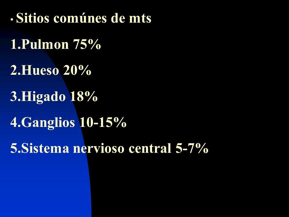 Sitios comúnes de mts 1.Pulmon 75% 2.Hueso 20% 3.Higado 18% 4.Ganglios 10-15% 5.Sistema nervioso central 5-7%