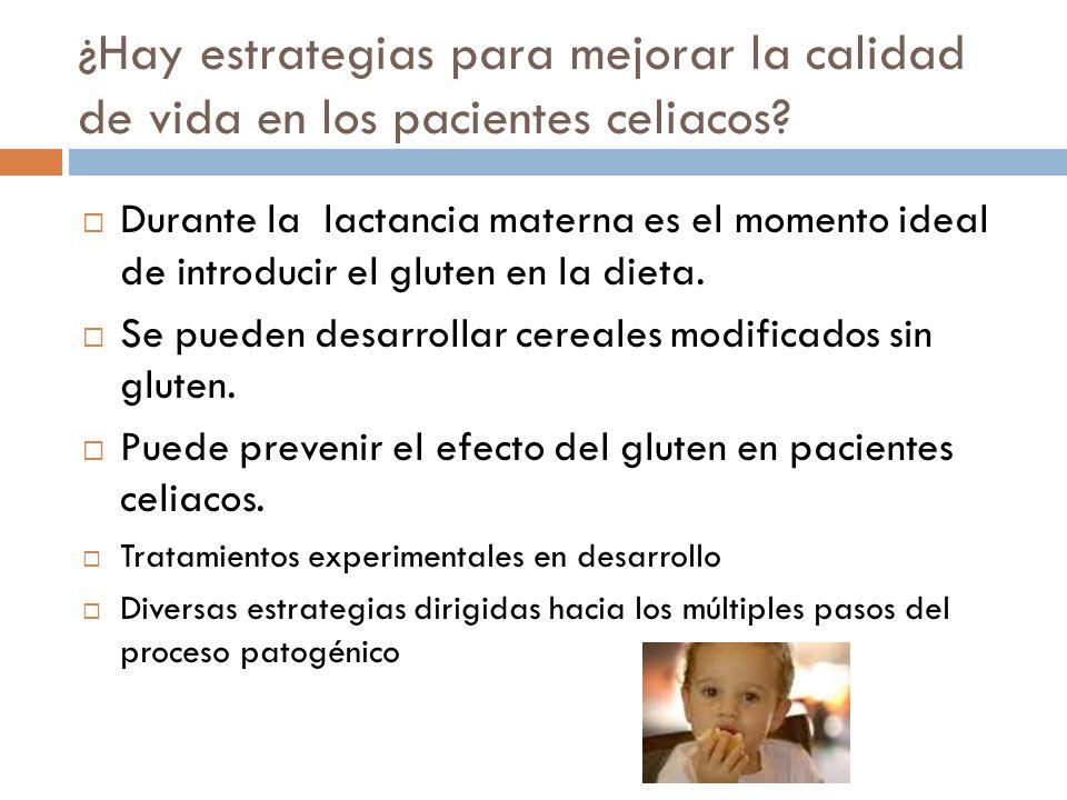 ¿Hay estrategias para mejorar la calidad de vida en los pacientes celiacos? Durante la lactancia materna es el momento ideal de introducir el gluten e