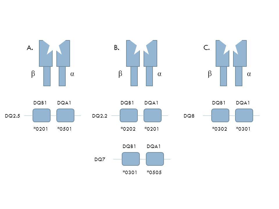 Genética 95% de los afectados son portadores de los alelos - DQA1*0501-DQB1*0201= haplotipo DQ2.5 que codifica la molécula DQ2 en cis(mismo cromosoma) O son portadores de los alelos -DQA1*0201-DQB1*0202= haplotipo DQ2.2 O -DQA1*0505-DQB1*0301= haplotipo DQ7 en cromosomas parentales y conforman la molécula DQ2 en trans.