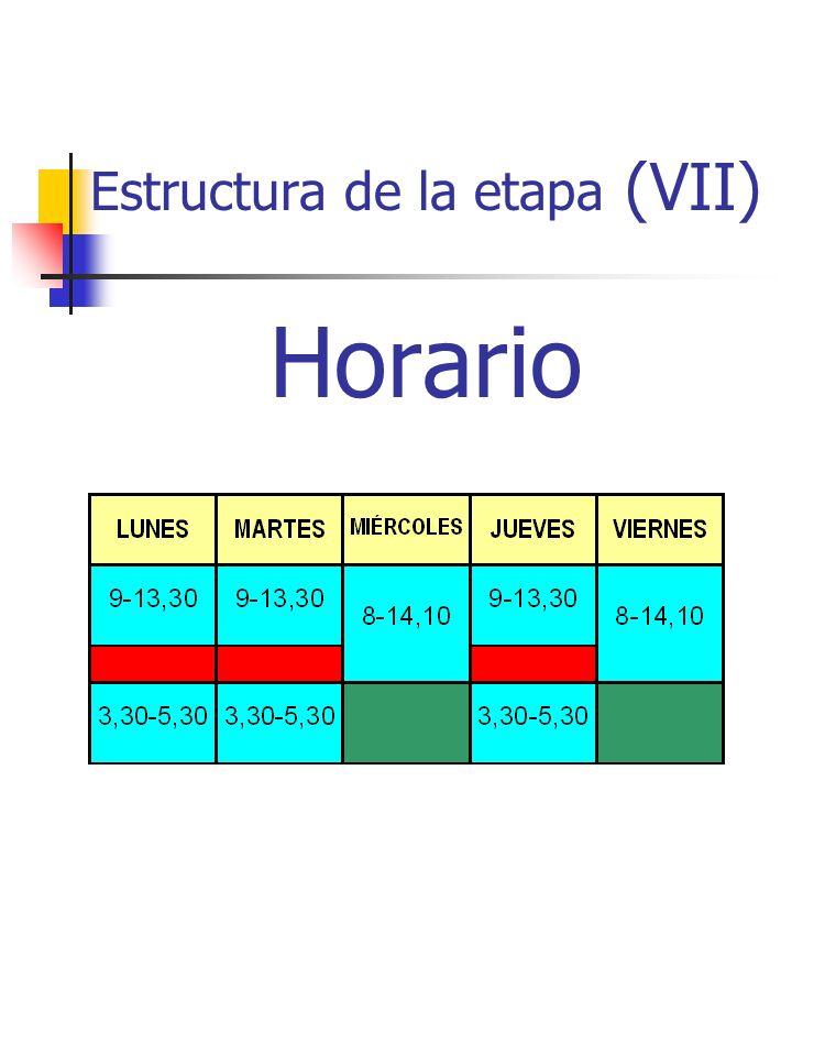 Estructura de la etapa (VII) Horario