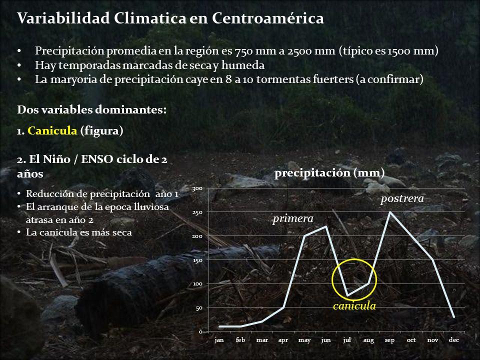 . Cambio Climatico en Centroamérica (TOR) Rainfall Para la primera, habrá una reducción de lluvia en junio (establacemiento de maíz) seguido por una canicula más severa en july, agosto, hasta septiembre Para la postrera, habrá menos lluvia en septiembre (siembra de frijól) TOR: Condiciones no serán favorables para el cultivo de frijol en zonas con suelos arenosas o de mala fertilidad primera (maize) postrera (beans) Temperatura Por 2050, la temperatura promedia sube por 2.2 ºC (1 ºC in 2020) La temperatura máxima del año aumentará de 31.7 ºC a 34.1 ºC La tempertura minima aumenta de 18.9 ºC a 20.8 ºC