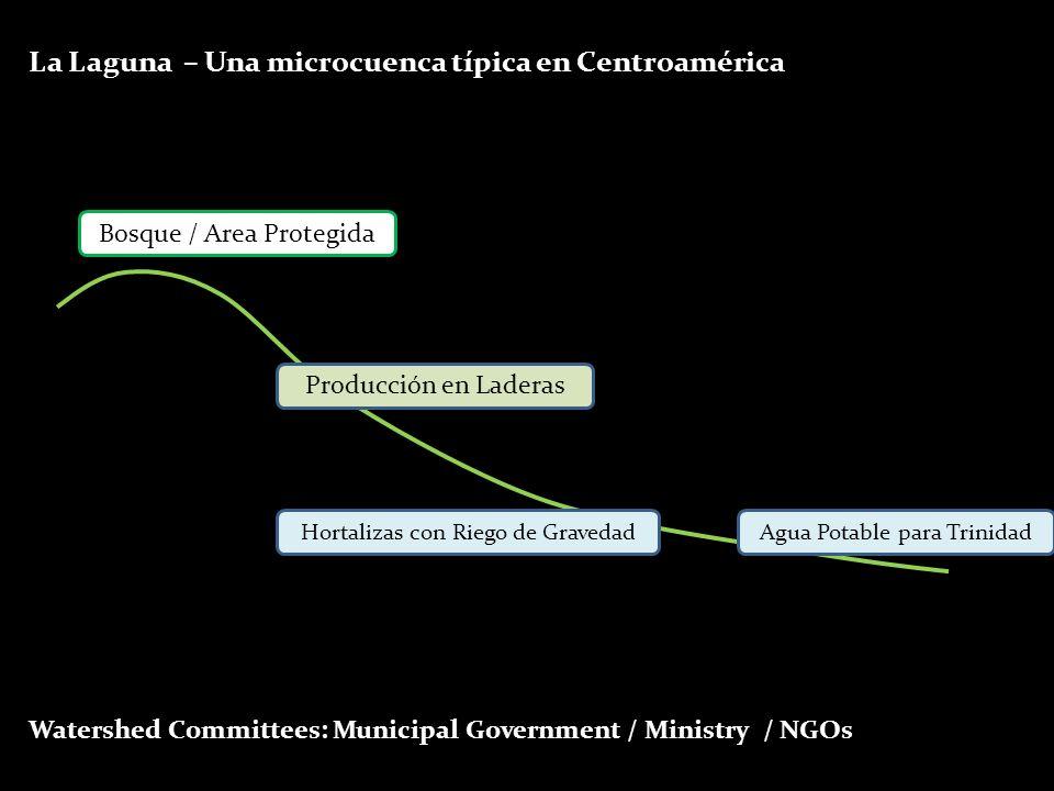 La Laguna – Una microcuenca típica en Centroamérica Bosque / Area Protegida Producción en Laderas Hortalizas con Riego de GravedadAgua Potable para Tr