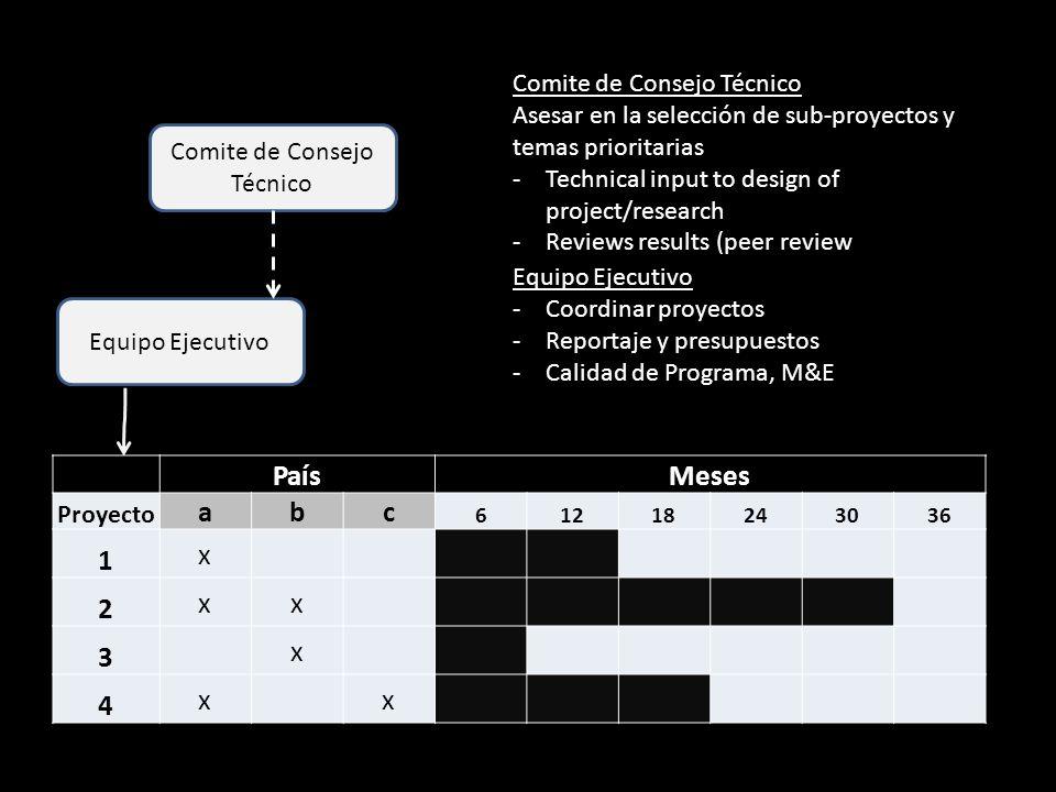 Equipo Ejecutivo Comite de Consejo Técnico PaísMeses Proyecto abc 61218243036 1 x 2 xx 3 x 4 x x Comite de Consejo Técnico Asesar en la selección de s
