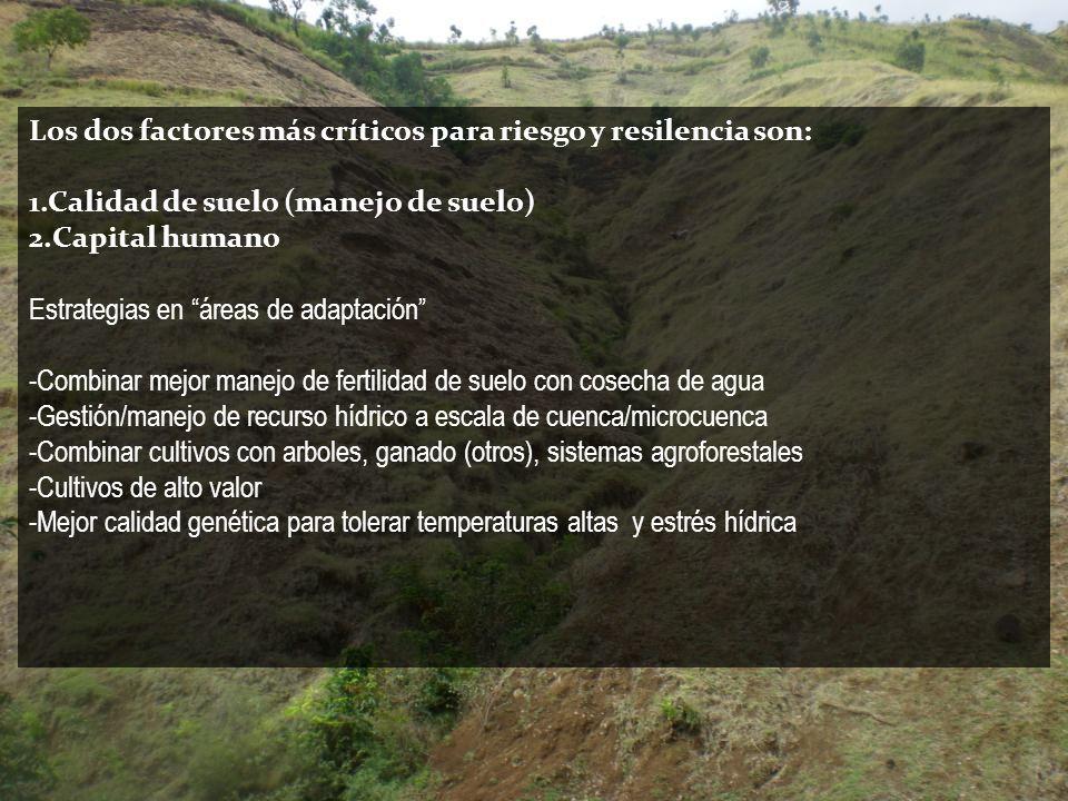 Los dos factores más críticos para riesgo y resilencia son: 1.Calidad de suelo (manejo de suelo) 2.Capital humano Estrategias en áreas de adaptación -