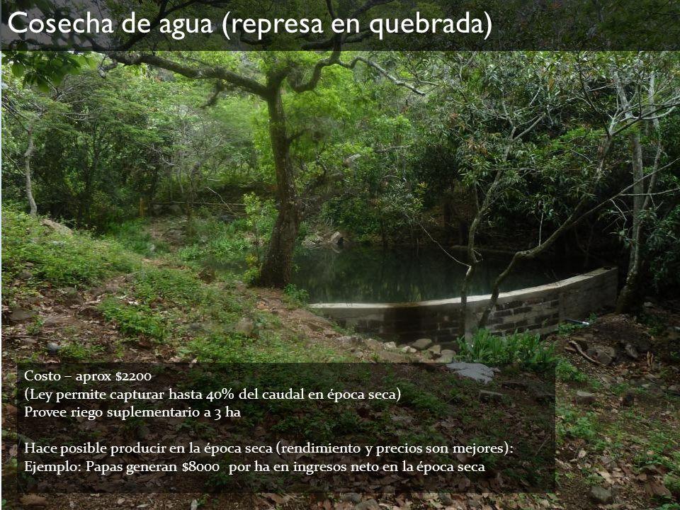Cosecha de agua (represa en quebrada) Costo – aprox $2200 (Ley permite capturar hasta 40% del caudal en época seca) Provee riego suplementario a 3 ha