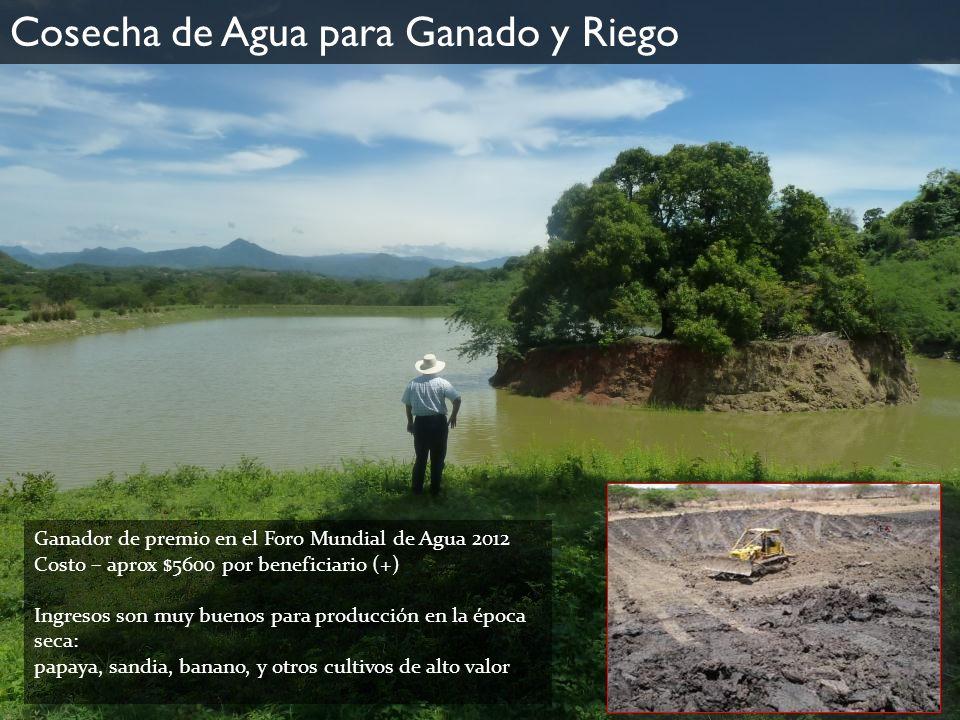 Ganador de premio en el Foro Mundial de Agua 2012 Costo – aprox $5600 por beneficiario (+) Ingresos son muy buenos para producción en la época seca: p