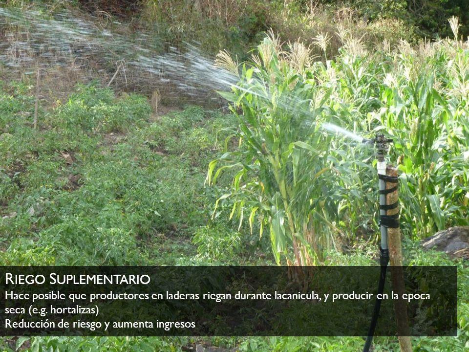 R IEGO S UPLEMENTARIO Hace posible que productores en laderas riegan durante lacanicula, y producir en la epoca seca (e.g. hortalizas) Reducción de ri
