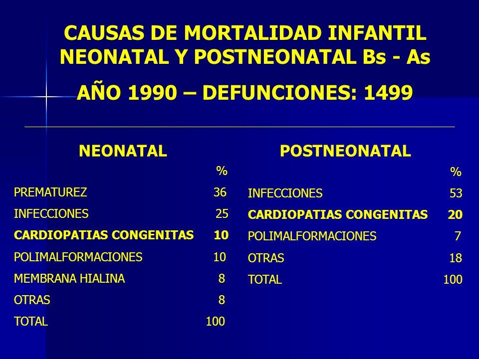 CAUSAS DE MORTALIDAD INFANTIL NEONATAL Y POSTNEONATAL Bs - As AÑO 1990 – DEFUNCIONES: 1499 NEONATAL % PREMATUREZ 36 INFECCIONES 25 CARDIOPATIAS CONGEN