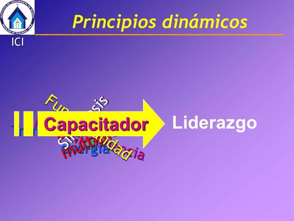 Principios dinámicos Interdependencia Multiplicació n Transformación de la energía Efectos múltiples Simbiosis Funcionalidad Capacitador Liderazgo ICI