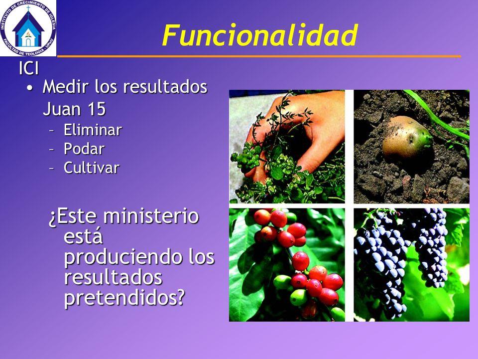 Funcionalidad Medir los resultados Juan 15Medir los resultados Juan 15 –Eliminar –Podar –Cultivar ¿Este ministerio está produciendo los resultados pre