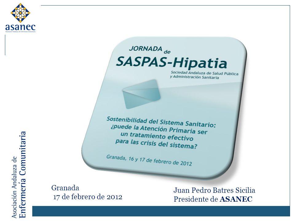 Juan Pedro Batres Sicilia Presidente de ASANEC Granada 17 de febrero de 2012