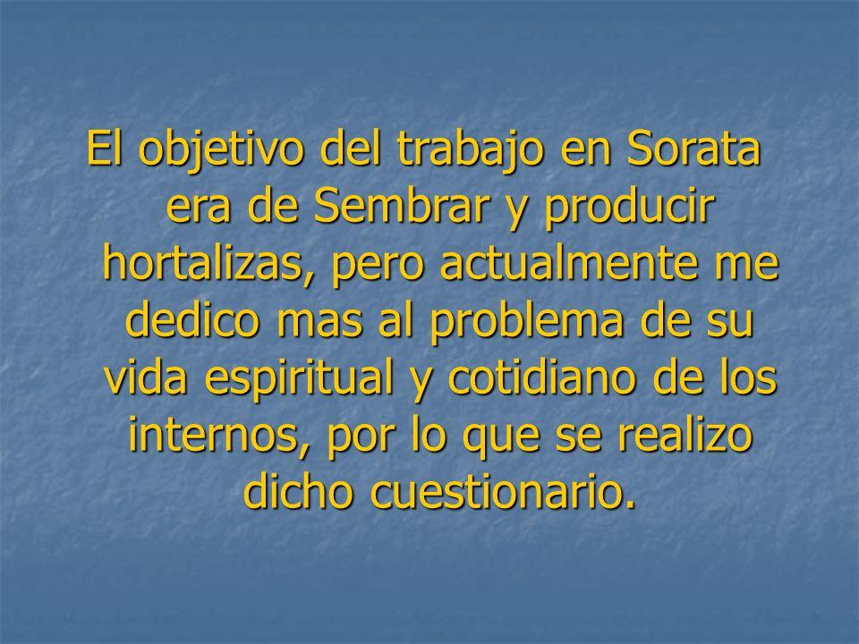 El objetivo del trabajo en Sorata era de Sembrar y producir hortalizas, pero actualmente me dedico mas al problema de su vida espiritual y cotidiano d