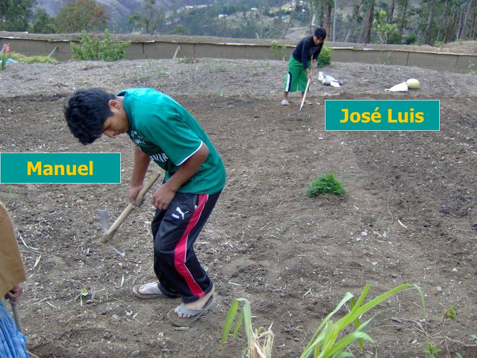 Manuel José Luis
