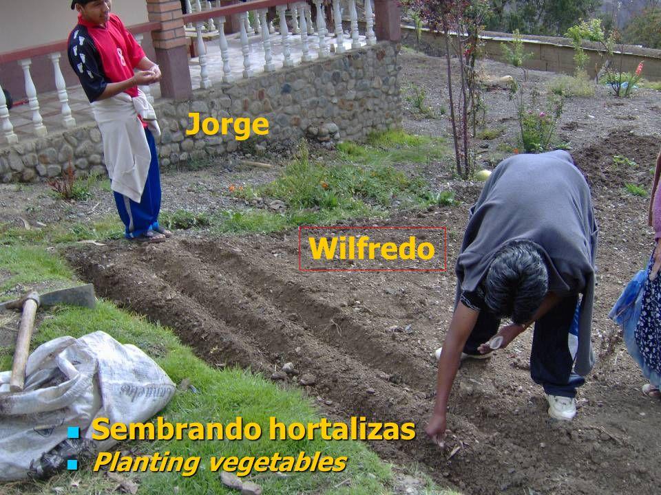 Realizando surcos y sembrado rábanos las muchachas y el encargado (Hermano Eusebio) Making furrows and planting radishes, the girls and the manager (Brother Eusebio)