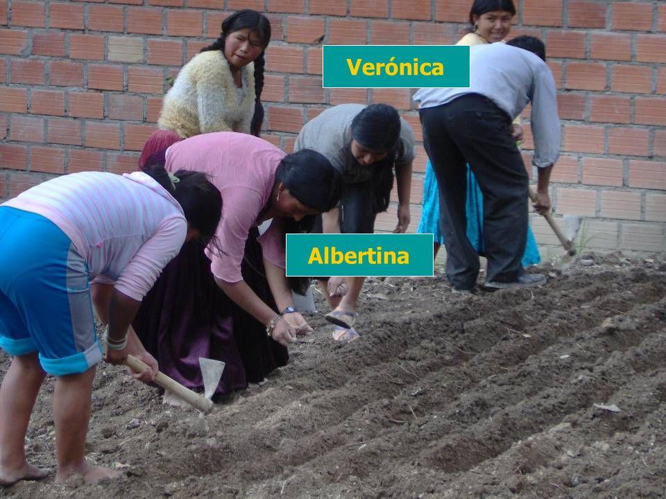 Albertina Verónica