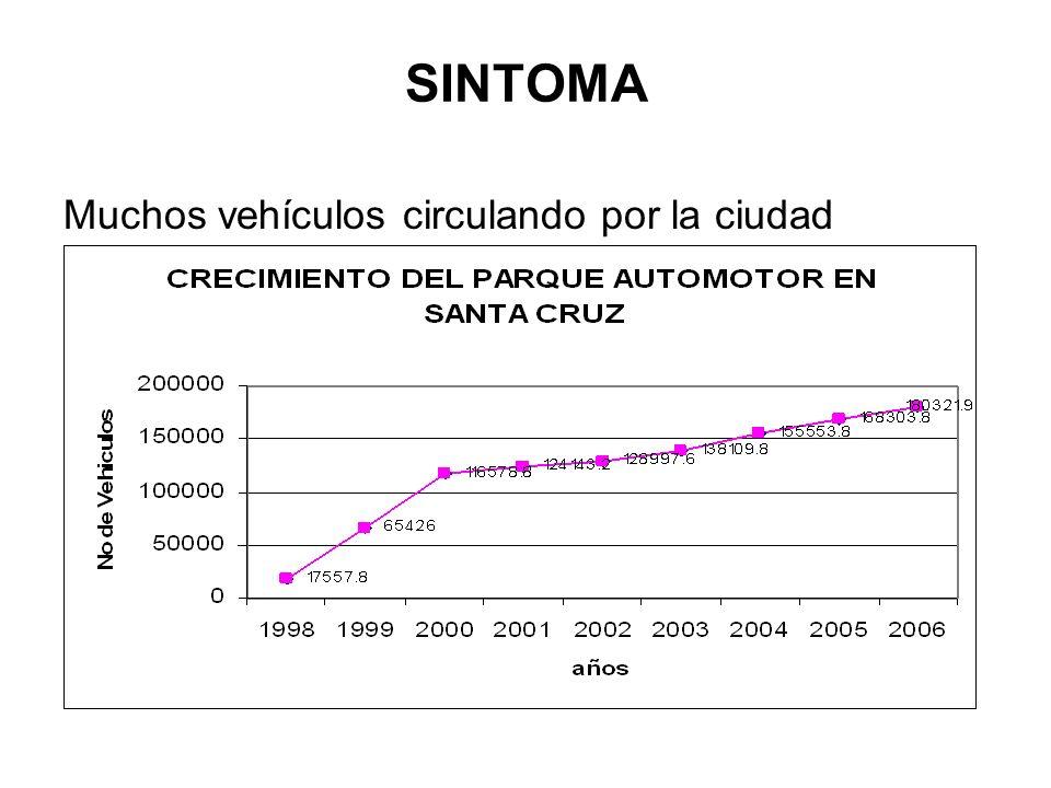 Relación entre Categorías de Vehículos del Parque Automotor de Santa Cruz