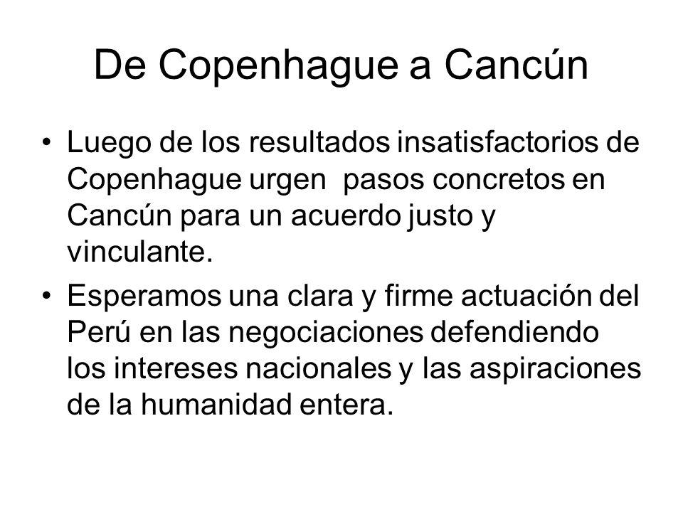 De Copenhague a Cancún Luego de los resultados insatisfactorios de Copenhague urgen pasos concretos en Cancún para un acuerdo justo y vinculante.