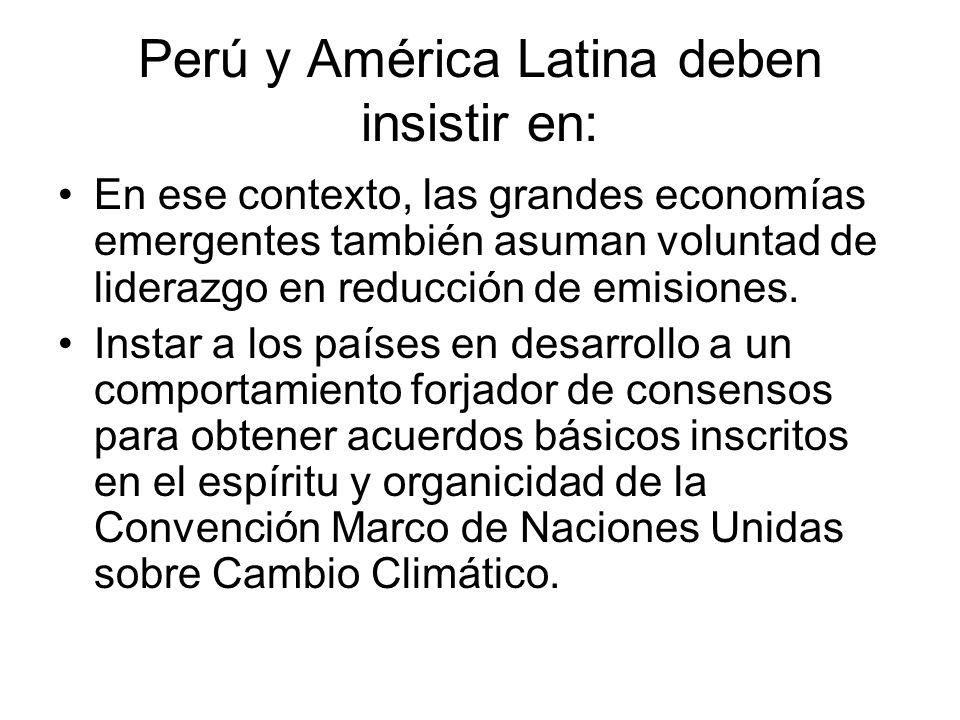 Perú y América Latina deben insistir en: En ese contexto, las grandes economías emergentes también asuman voluntad de liderazgo en reducción de emisiones.