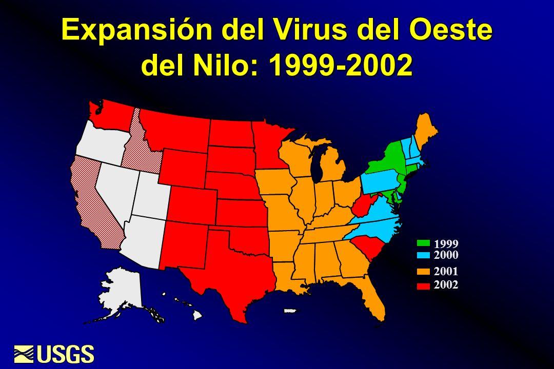 Virus del Oeste del Nilo en Aves: 2002