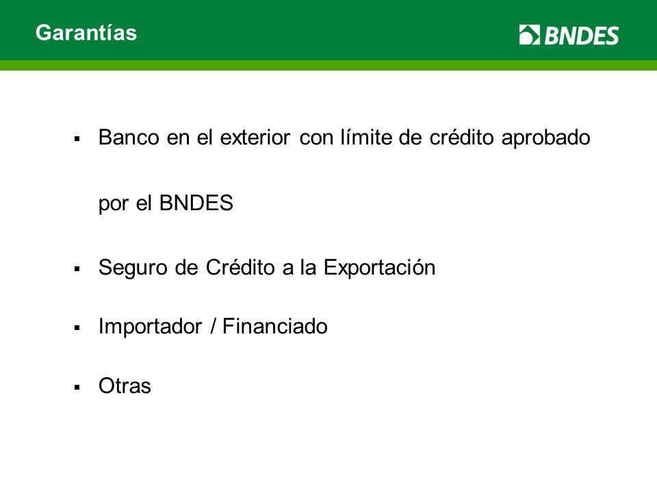 Banco en el exterior con límite de crédito aprobado por el BNDES Seguro de Crédito a la Exportación Importador / Financiado Otras Garantías