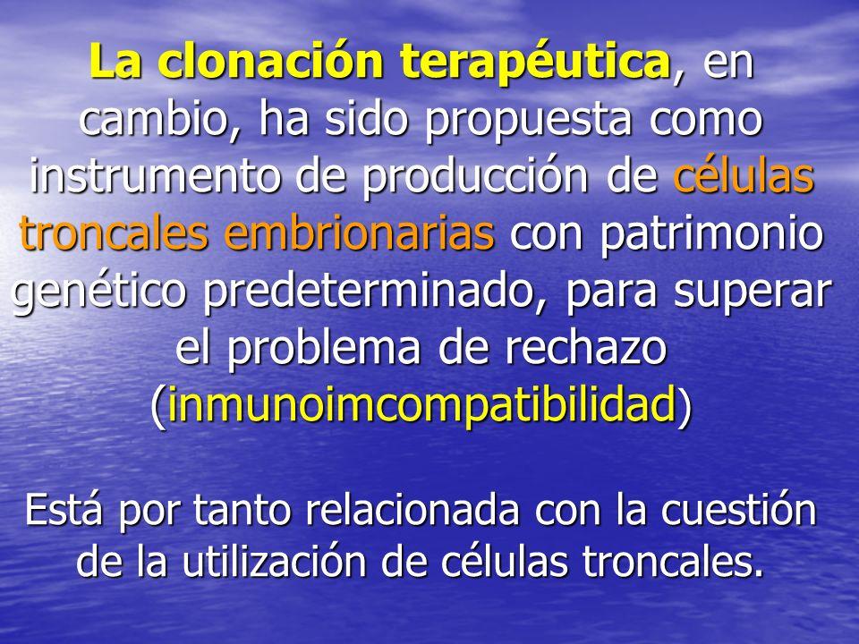 La clonación terapéutica, en cambio, ha sido propuesta como instrumento de producción de células troncales embrionarias con patrimonio genético predet