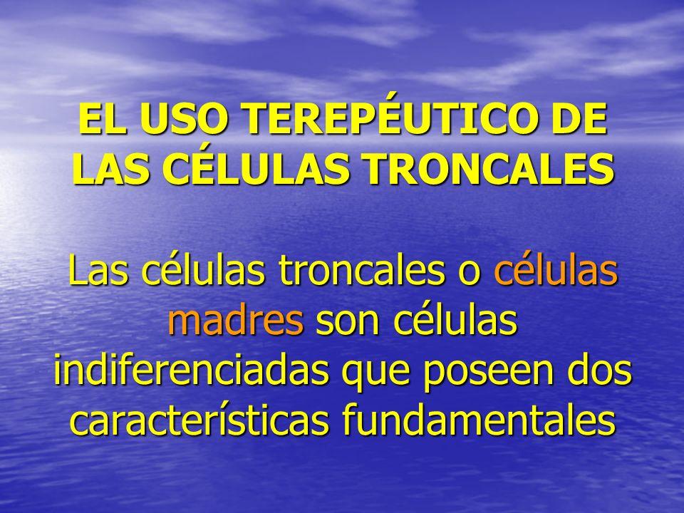 EL USO TEREPÉUTICO DE LAS CÉLULAS TRONCALES Las células troncales o células madres son células indiferenciadas que poseen dos características fundamen